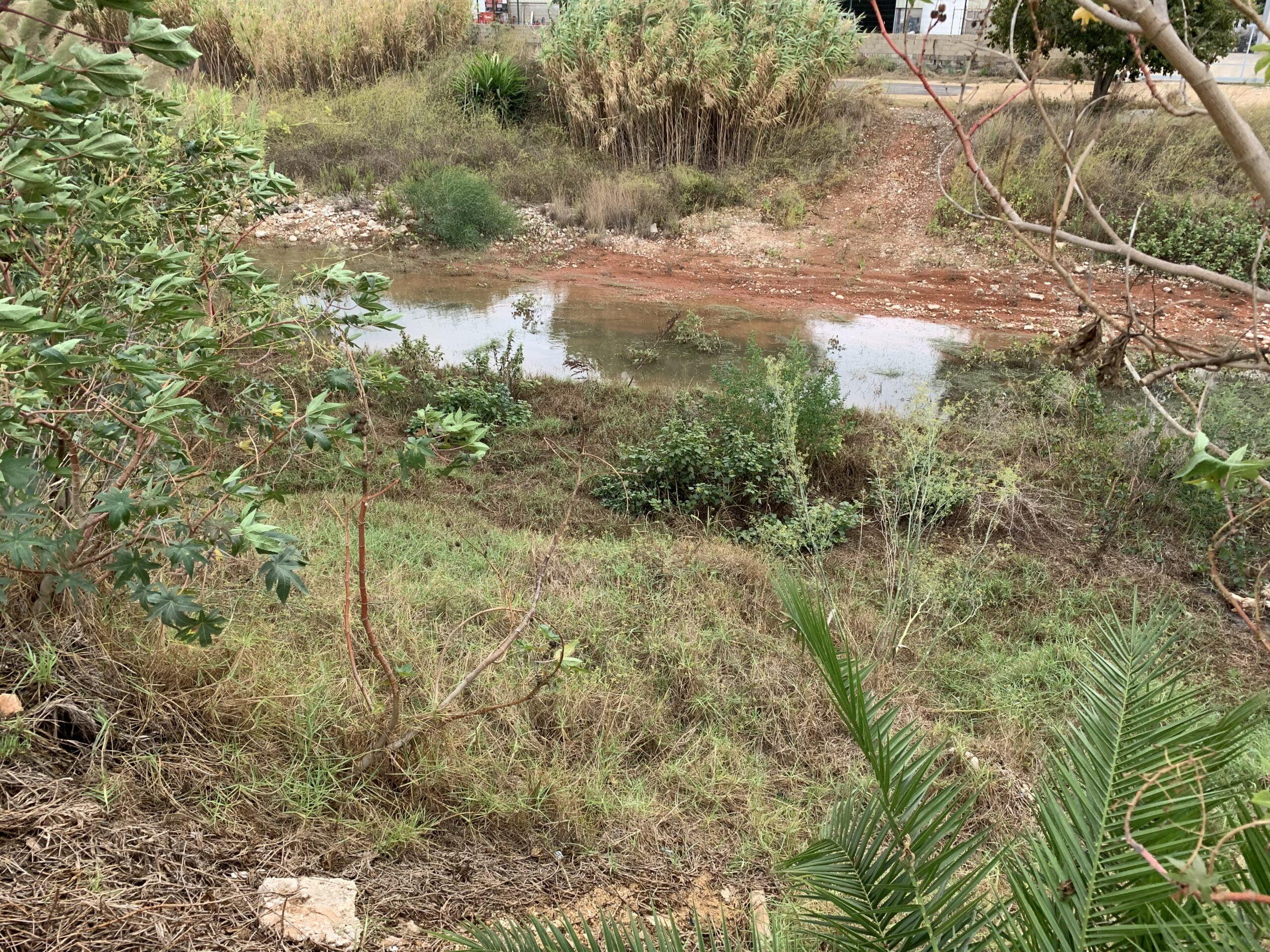 Agua acumulada en un tramo del cauce del río Gorgos