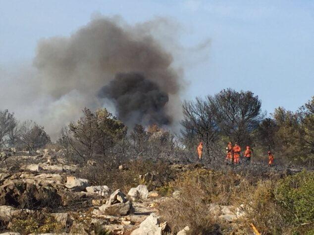 Imagen: Brigadas forestales en la extinción de las llamas