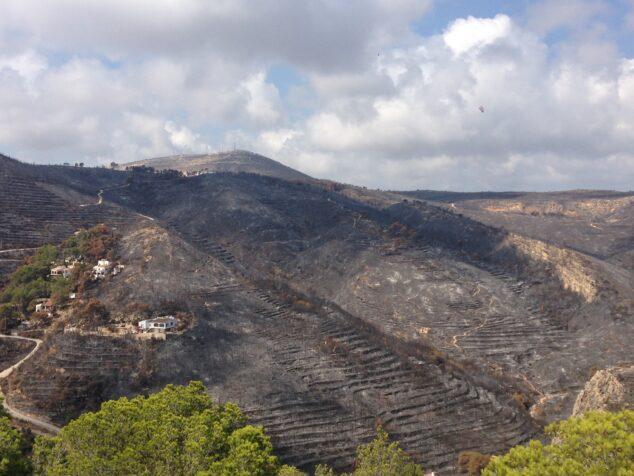 Imagen: Parque Forestal de la Granadella tras el incendio de 2016