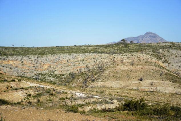 Imagen: Reforestación de la Granadella a los dos años del incendio